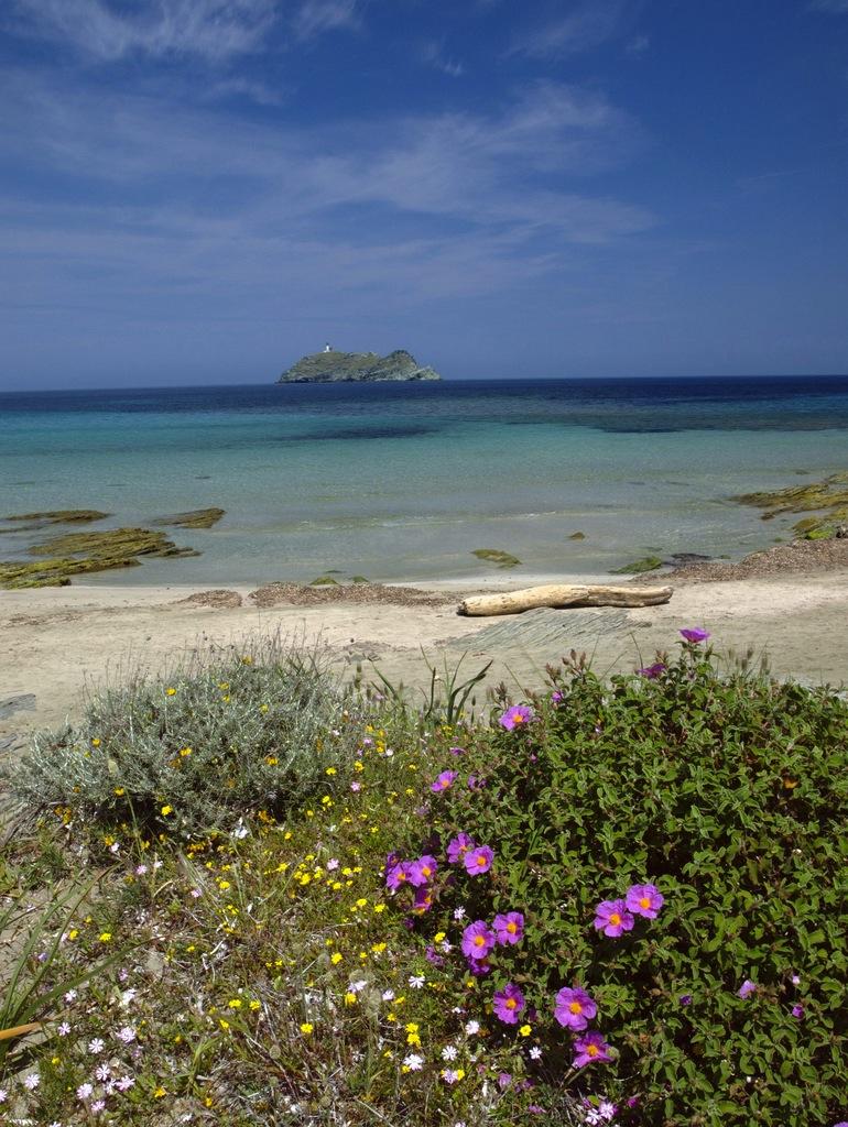 Playas de Córcega