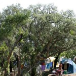 Campings en Córcega
